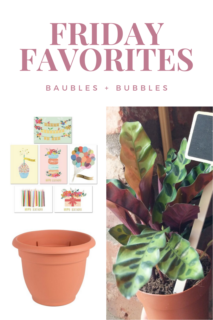 2/28 Friday Favorites | Baubles + Bubbles