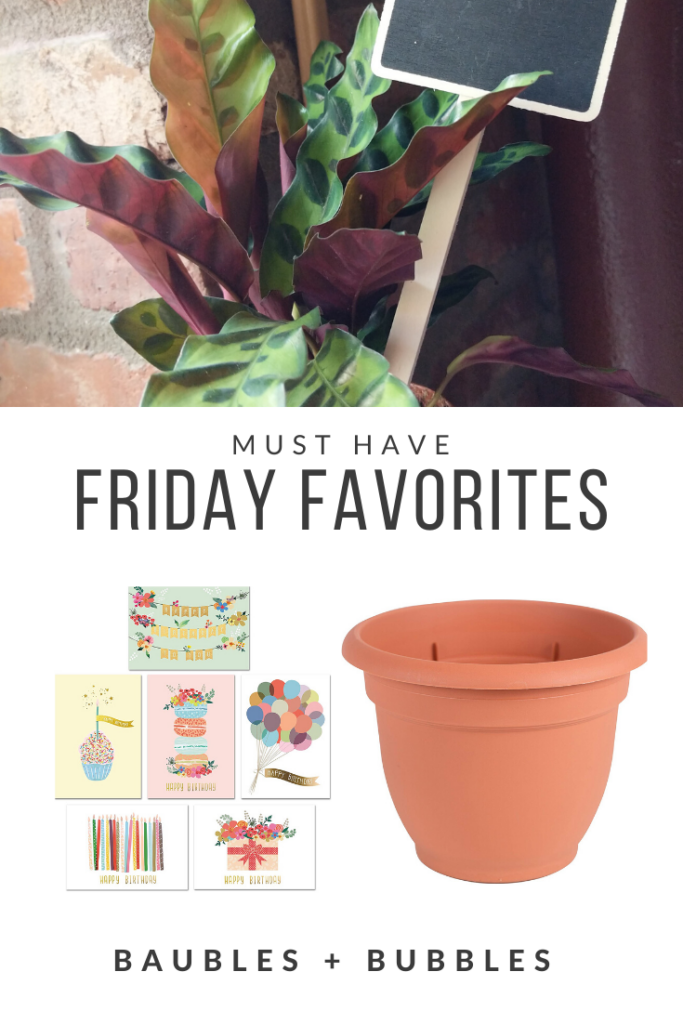 Must Have Friday Favorites | Baubles + Bubbles Blog