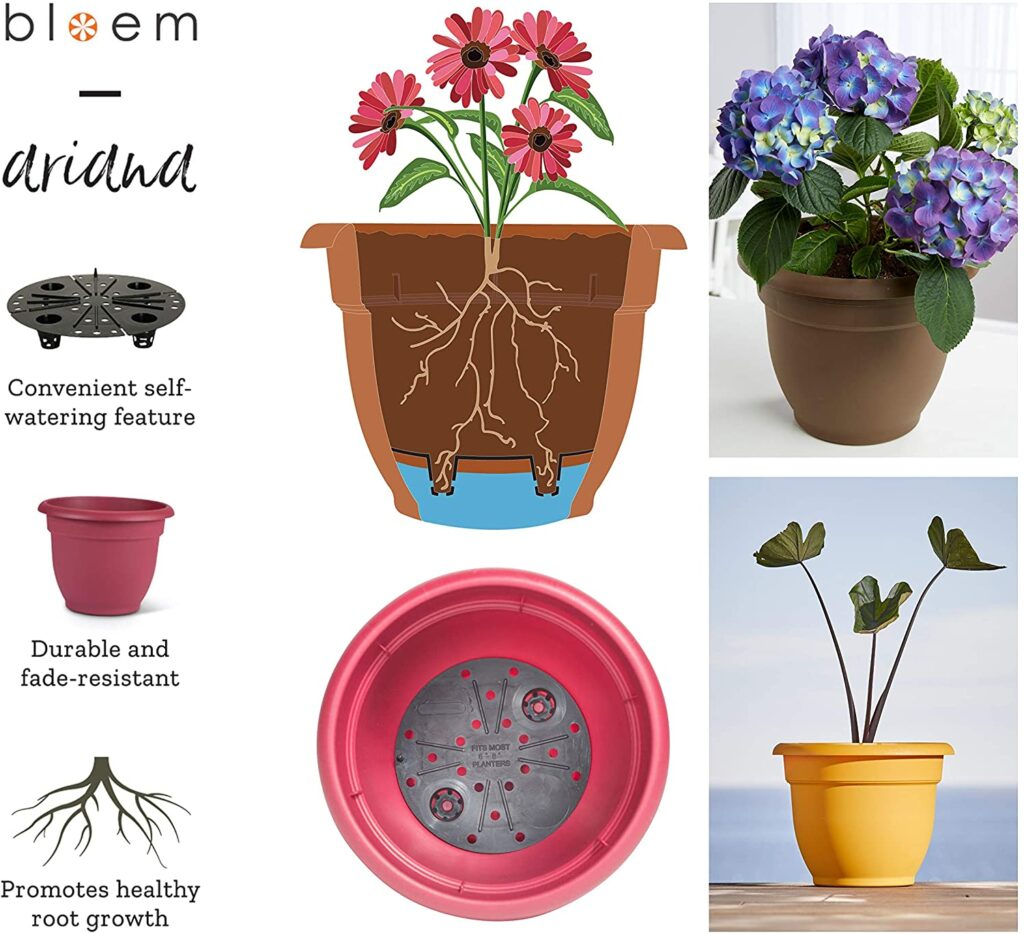 Self Watering Planters - Amazon Essentials: Plant Products | Baubles + Bubbles