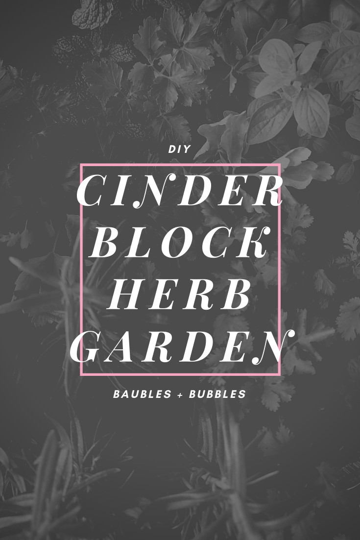 DIY Cinder Block Herb Garden | Baubles + Bubbles